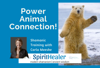 Power Animal Connection