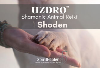 Uzdro Shamanic Animal Reiki 1